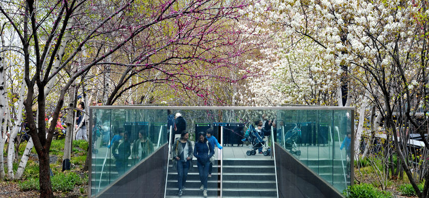 Photo of the week trees in bloom list image