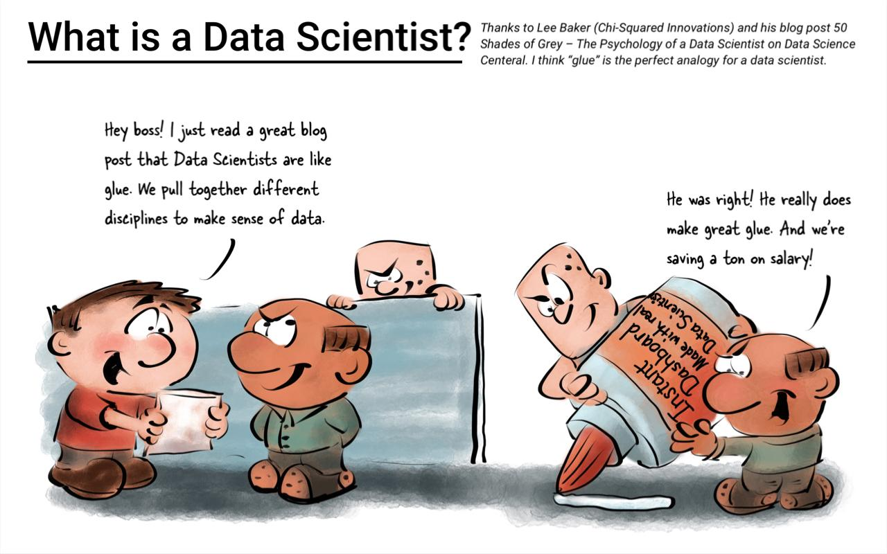 What is a Data Scientist - Cartoon by Philip Riggs