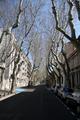 Avignon_small
