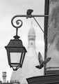 Montmartre_lamp_pigeons_small