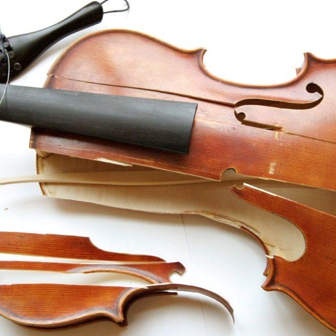 Domestic_violins_small