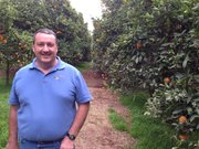 Caption: Noel Stehly, an organic citrus and avocado farmer in northern San Diego County, says he's never tried to bring in guest workers because the process is cumbersome and expensive., Credit: Adrian Florido