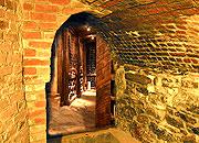 Caption: Seth's Wine Cellar, Credit: Seth Shostak