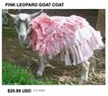 Regretsy_pinkgoatcoat_small
