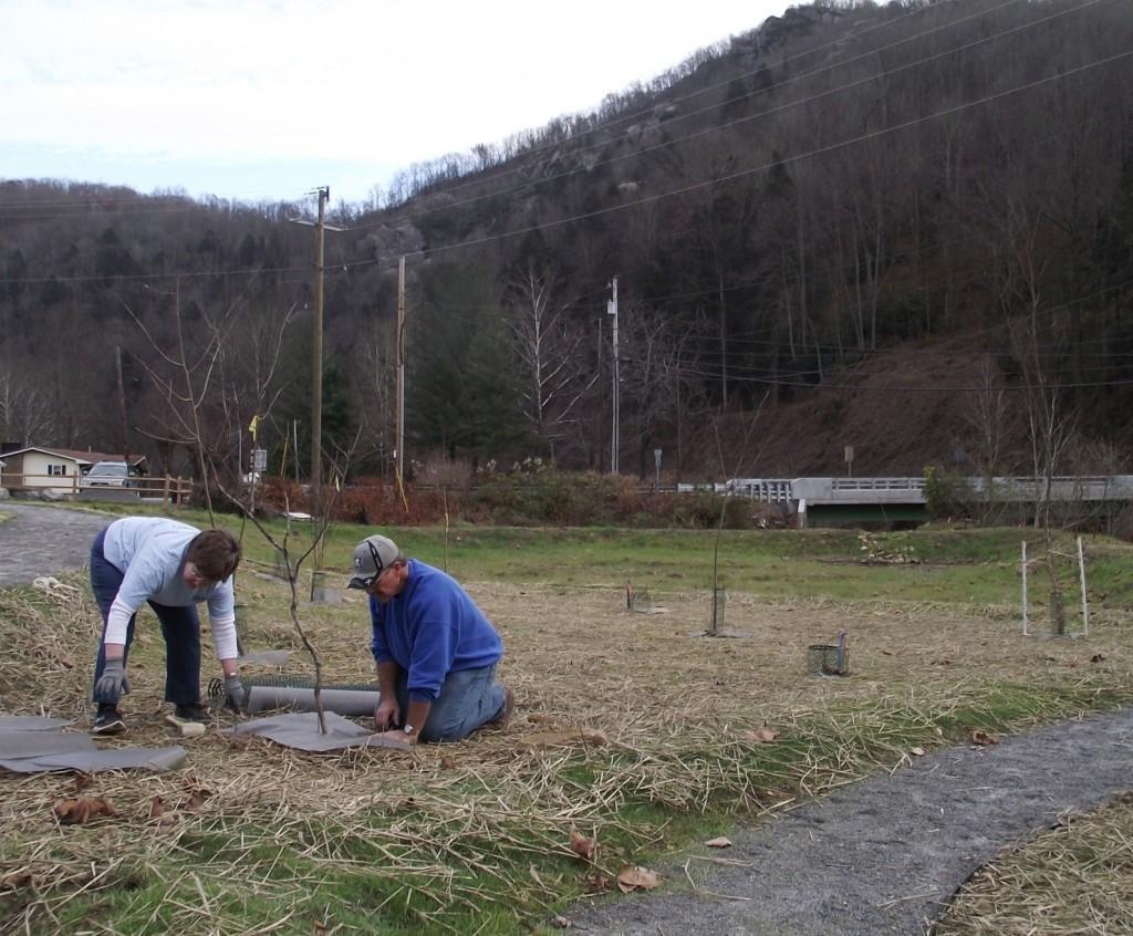 Caption: Carol Doss and Bruce Miles plant a tree at the Stone Creek Outdoor Classroom near St. Charles, Va.