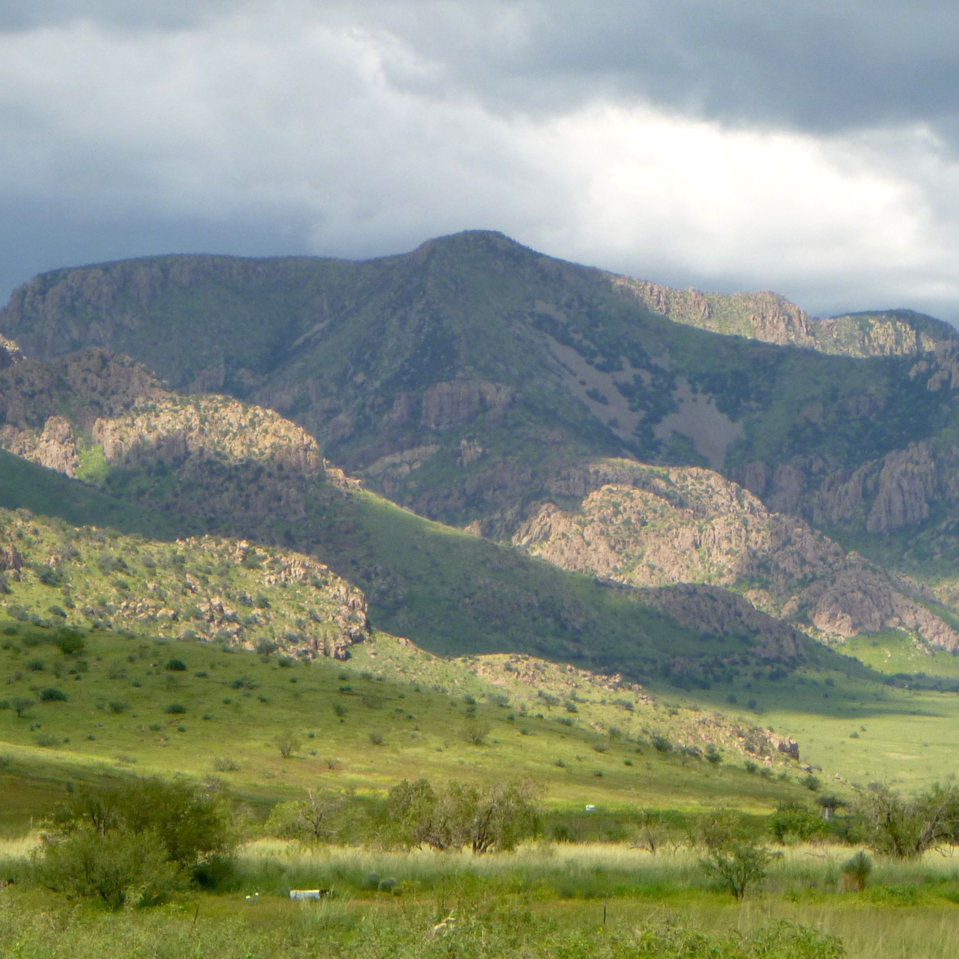 Caption: In the summer monsoon season, grass carpets the Chiricahua foothills., Credit: Aengus Anderson