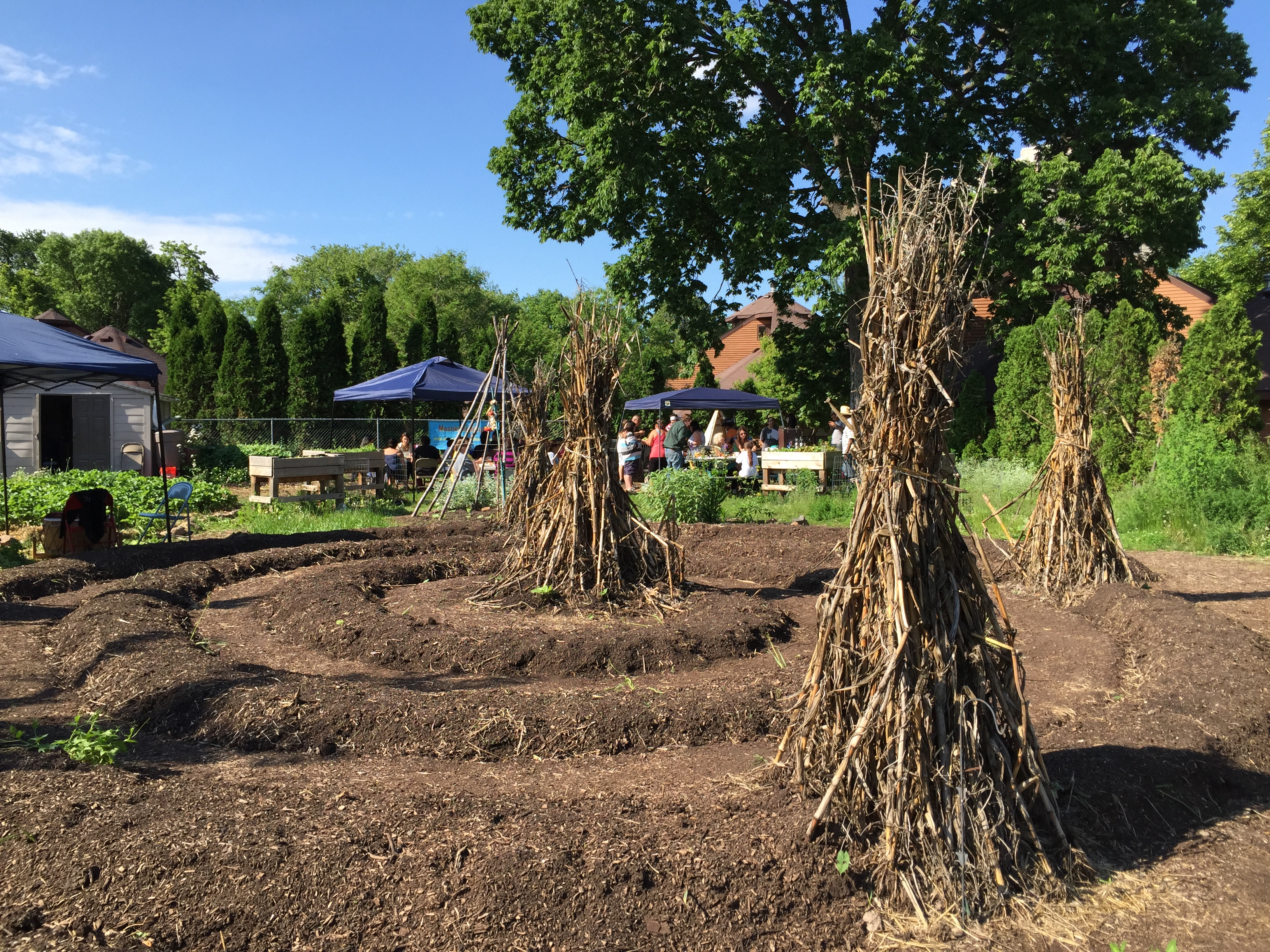 Caption: The central spiral at the Mishkiikii Gitigan in south Minneapolis., Credit: Melissa Townsend