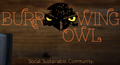 Burrowing_owl_image_small