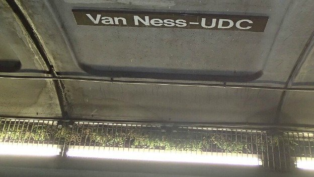 Caption: Unbeknownst to most commuters, ferns grow at the Van Ness-UDC Metro station in Washington, D.C.., Credit: Andy Baldwin