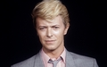Bowie2_small