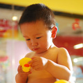 09_baby_duck_sq_small