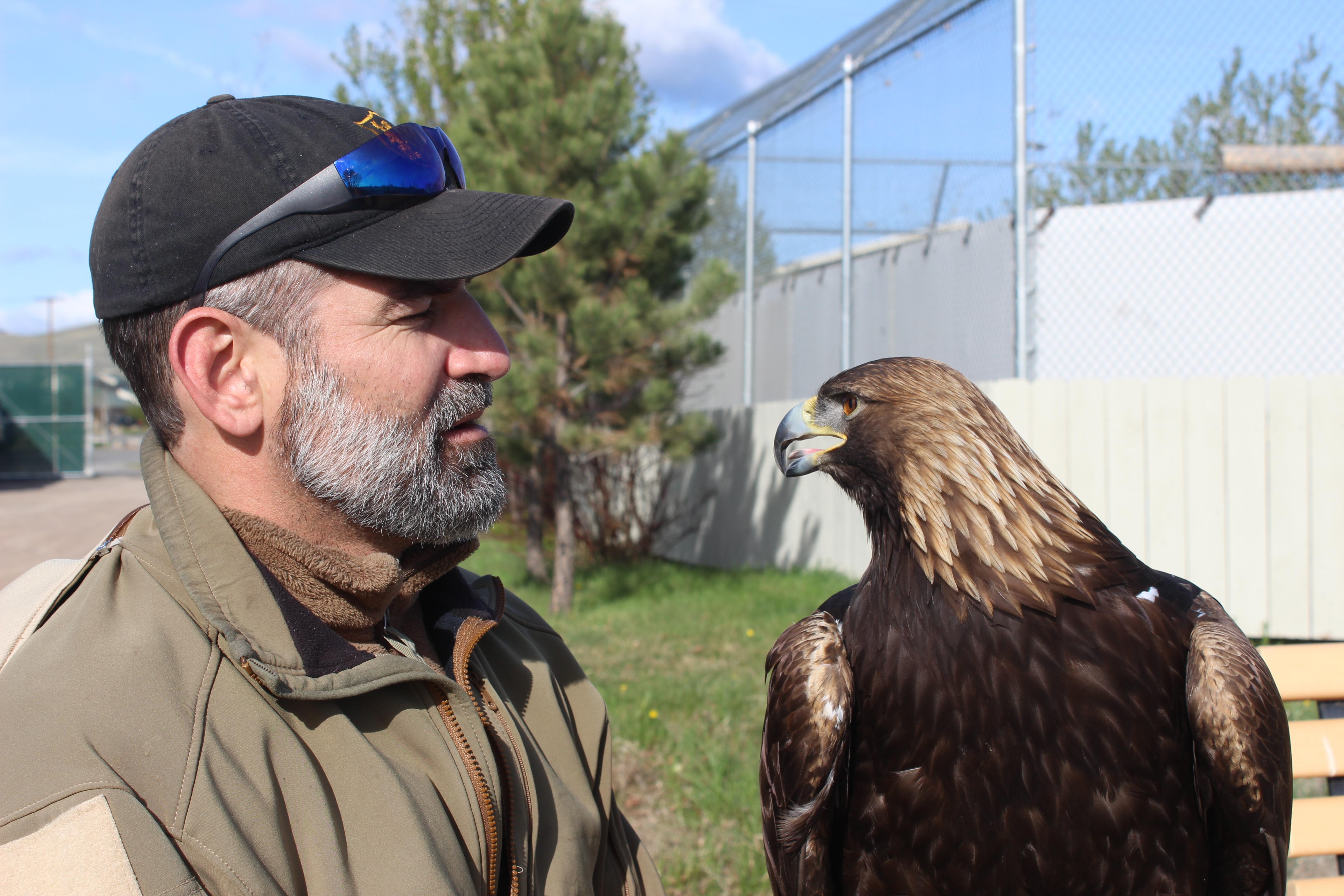 Caption: Scott Hannon with Eagle, Helena, MT, Credit: Clay Scott