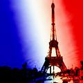 Frenchflag_small