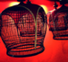 Caption: Bird Cages, Credit: Thomas Quine