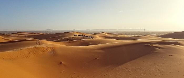 Caption: Merzouga, Morocco Sahara desert camel trek, Credit:  Evaldas Liutkus/Flickr/CCO