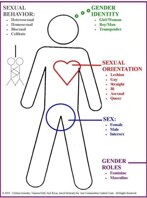 Caption: a diagram of sex, sexuality and gender, Credit: Robin Hubbard