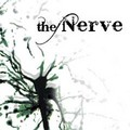 Thenerve-240x240_small