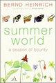 Summerworld_small