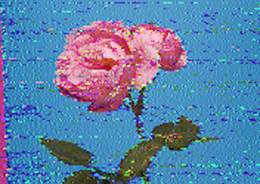 Piece image
