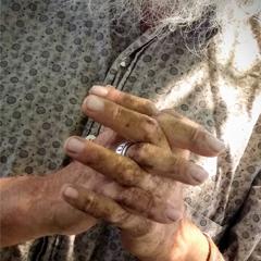 Caption: The hands of Morgan Johnstone Jr., Credit: Maribel Cuervo