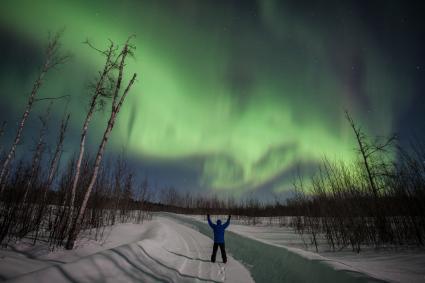 Caption: Northern Lights in Cook County, Credit: Travis Novitsky