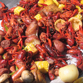 Crawfish_small