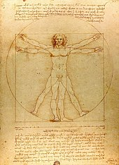 Caption: 'Vitruvian Man', Credit: Leonardo da Vinci