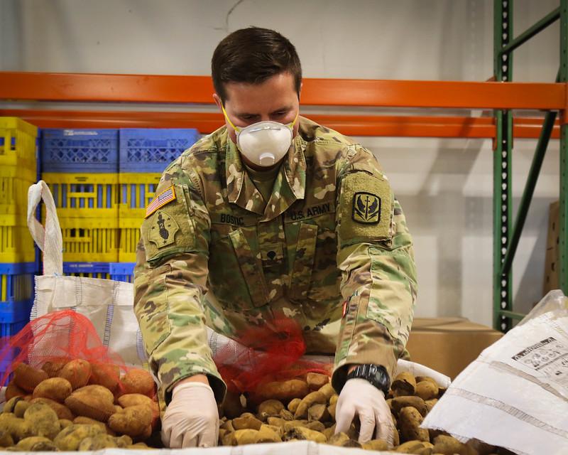 Caption: Spc. Trent Bostic of the North Carolina National Guard examines and sorts produce at a Food Bank., Credit:  Hannah Tarkelly / U.S. Army National Guard