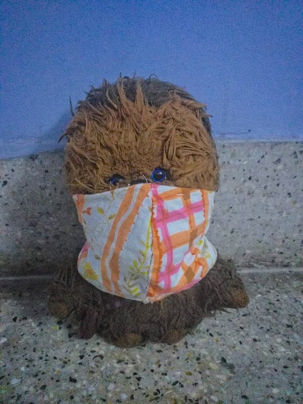Caption: Chewie wears his mask. Be like Chewie., Credit: Sandip Roy