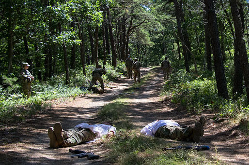 Caption: In a training exercise at Joint Base Cape Cod, Army ROTC cadets practice ambushing opposing forces., Credit:  Lindsay Grant / U.S. Army