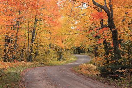 Caption: Fall Colors on the Honeymoon Trail, Credit: Travis Novitsky