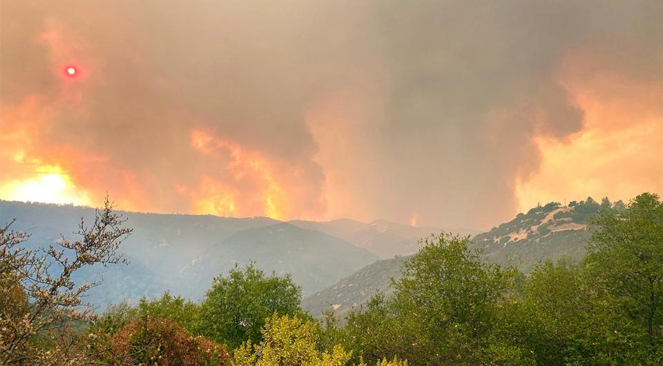 Caption: Fires at Stebbins Cold Canyon Entry, Near Quail Ridge