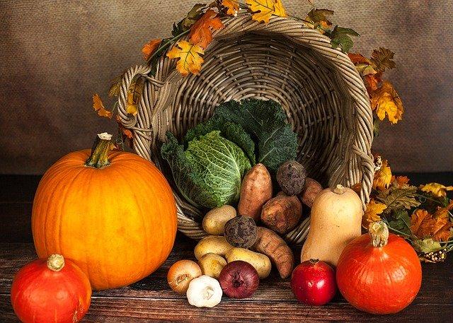 Pumpkin-1768857_640_small