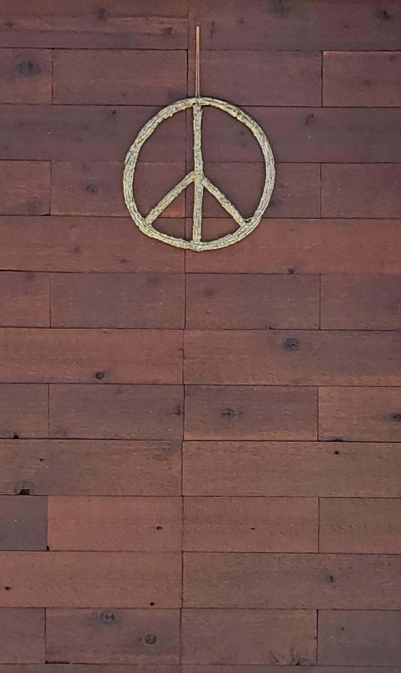 Peacesignwooddoor1_small