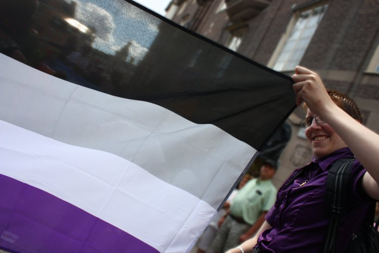 Caption: The current black, gray, white and purple-striped flag was created for the asexual community in 2010., Credit: trollhare / Flickr
