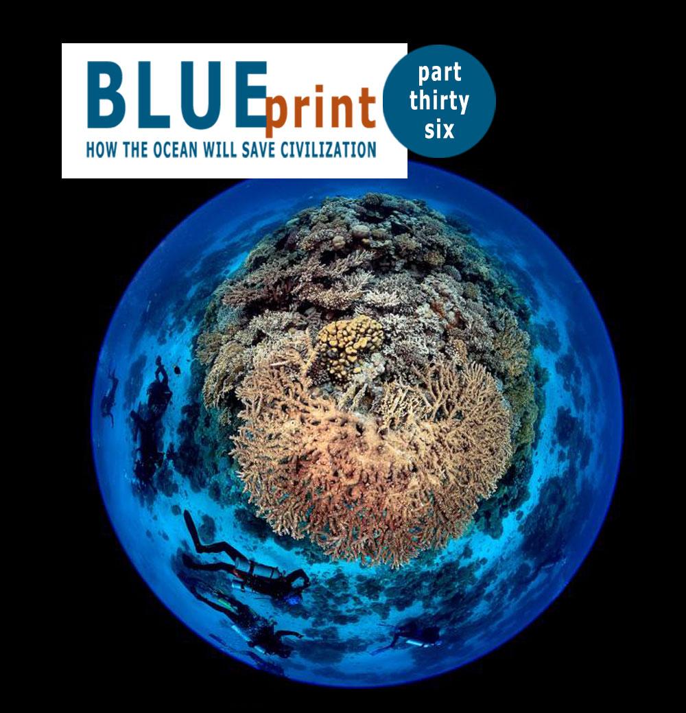 589_blueprint_36_tools-ocean-assessment_small
