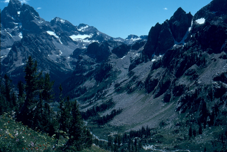 Caption: www.cafechill.org, Credit: National Park Service (Grand Teton National Park), 2010, public domain.