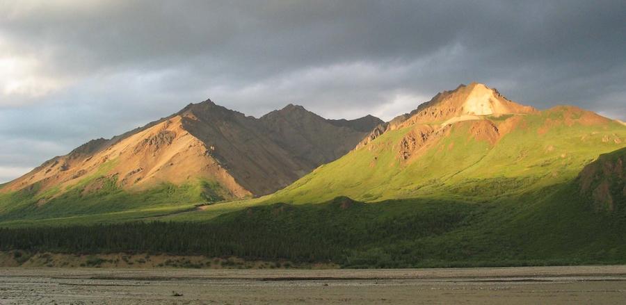 Caption: www.cafechill.org, Credit: Denali National Park & Preserve. National Park Service, 2010, public domain.