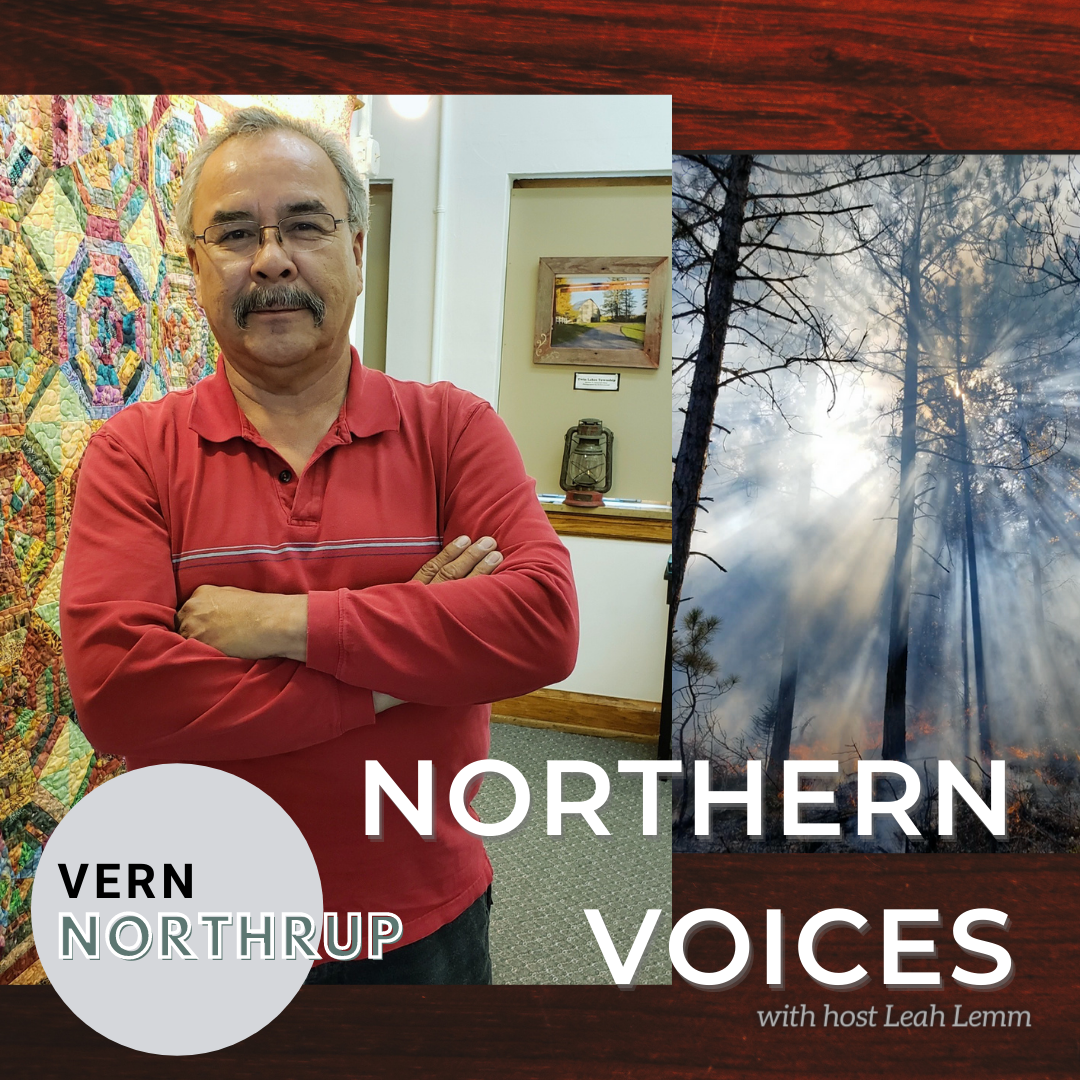 Copy_of_northern_voices_small