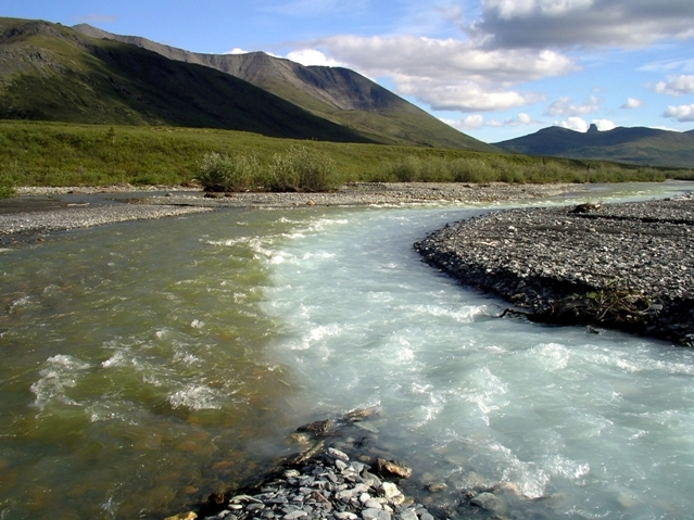 Caption: www.cafechill.org, Credit: Gates Of The Arctic National Park & Preserve, National Park Service, public domain.