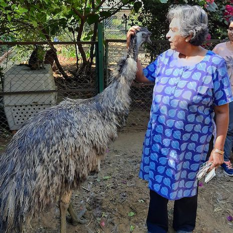 Caption: Anjali Gopalan, the emu-whisperer at All Creatures Great and Small, Credit: Instagram @allcreaturesgreatandsmallindia.