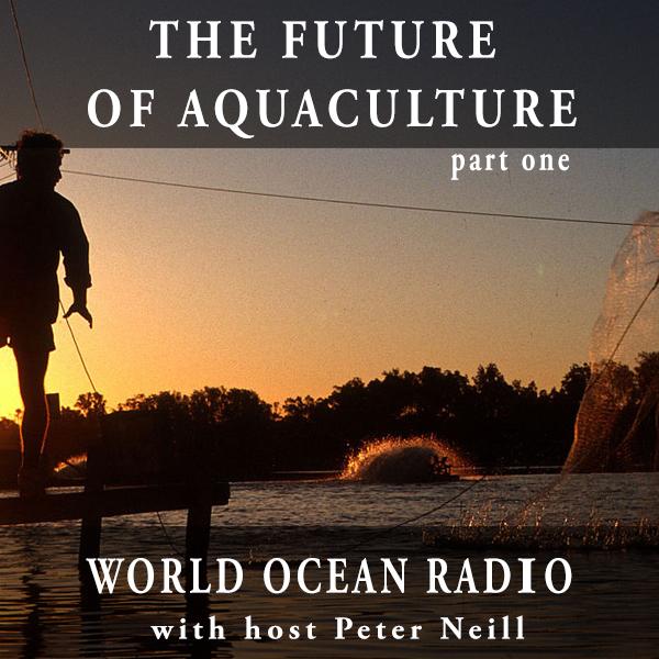 Caption: Aquaculture prawn ponds Queensland, Australia, Credit: CSIRO Science Creative Commons