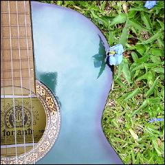 """Credit: <a href=""""http://www.flickr.com/photos/43741631@N00/2243492252/"""">Luma Chielle</a>"""