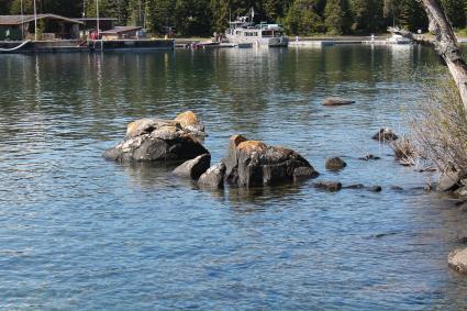 Caption: Rock Harbor, Isle Royale