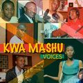 Caption: Kwa Mashu Voices Series Logo, Credit: © NBPC, 2011