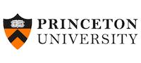 Princeton 200x90