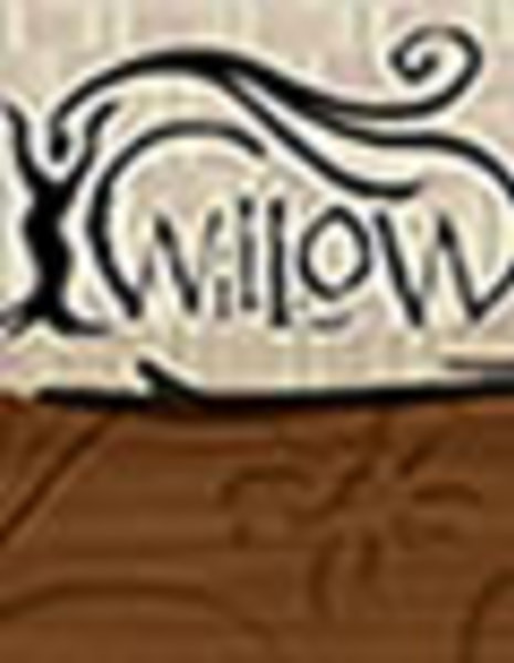 Multimedia WiLLOW: HIV Transmission Reduction Among African American Women Living with HIV