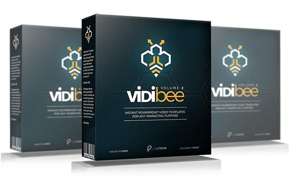 VidiBee v2