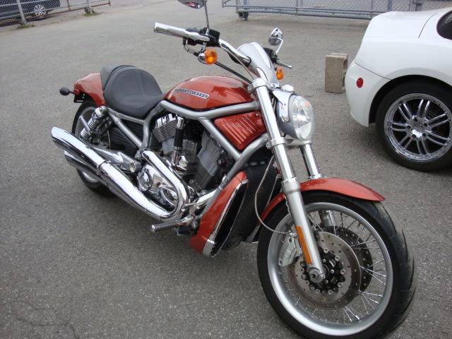 harley davidson v rod 2008 occasion vendre laval chez lajeunesse moto sport lt e. Black Bedroom Furniture Sets. Home Design Ideas