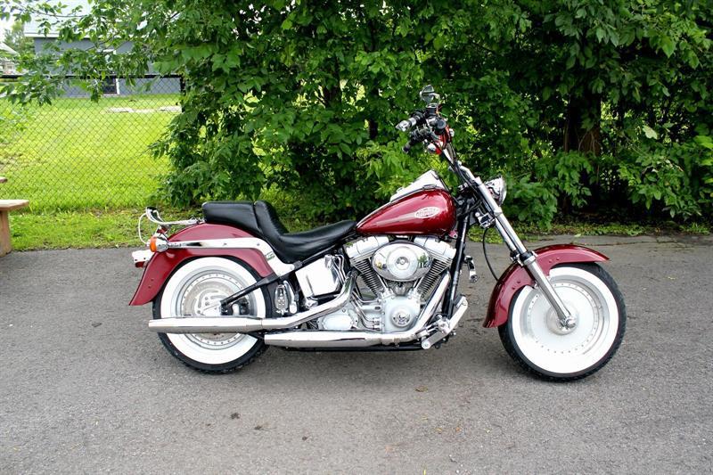 Harley Davidson FXST 2001